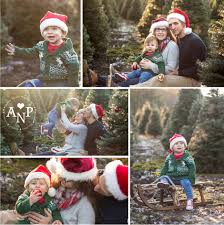 christmas tree farm olympia wa family photographer ashley