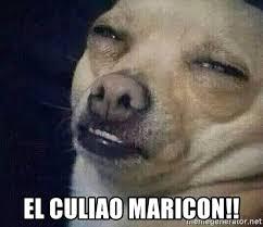 Maricon Meme - el culiao maricon perro el ql mentiroso meme generator