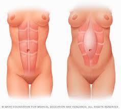 Vanessa Hudgens nude celebrities   Nude Celebrities Pics Vanessa Huggins Nude Photo