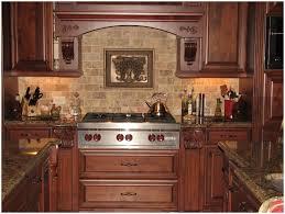 Purple Kitchen Backsplash Kitchen Brick Veneer Backsplash Pictures Beautiful Exposed Brick