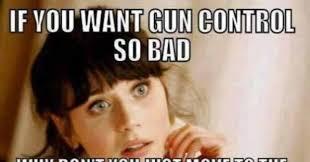 Democrat Memes - brutal meme tells anti gun liberals where they can go