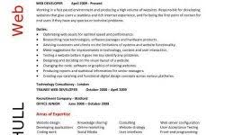 Web Development Resume Professional Summary Examples For Resume The Best Resume