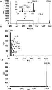wiring diagram yamaha byson wiring diagram weick