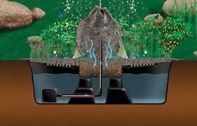 Aquascape Aquascape Aquabasin 45 U2013 Aquascapes