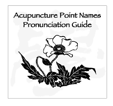 pronunciation pronunciation guide to acupuncture points audio cd blue poppy
