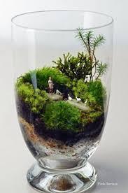 99 best terrarium garden images on pinterest succulents bottle