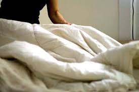 How Do You Clean A Feather Duvet How To Wash A Down Comforter Comforter Organizing And Cleaning