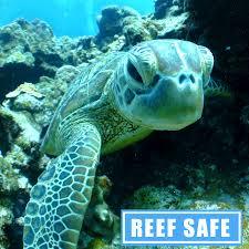 pb organics reef safe sunscreen organic skincare