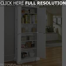 Kitchen Storage Cabinets Ikea Stand Alone Kitchen Cabinets Ikea Tehranway Decoration