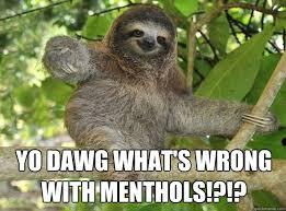 Sloth Whisper Meme - sloth whisper meme 28 images sloths with captions memes funny