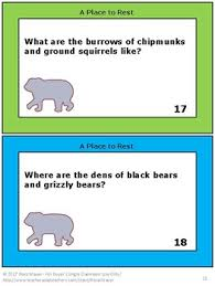 animal hibernation task card or worksheet activity by rosa mauer