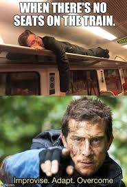 Funny Meme - image tagged in funny memes funny meme funny memes bear grylls