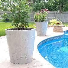 large concrete planter large concrete planters backyard ideas pinterest large