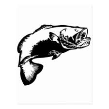 cool bass fishing cards invitations greeting photo cards zazzle