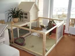 Indoor Hutch 10 Playpen Rabbit And Find Image