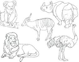 zoo coloring pages preschool animal coloring pages for preschoolers zoo coloring pages to print