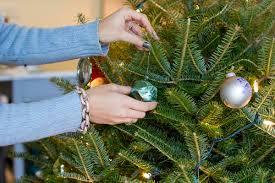 Shiba Inu Christmas Ornament Honest Talk Reader Survey U2014 The Fox U0026 She