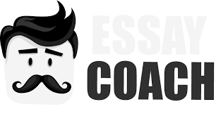 buy college essays online from cheap and safe essay writing service