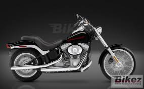 read book harley davidson fxst softail manual pdf read book online