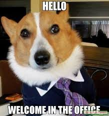 Welcome Meme - hello welcome in the office meme lawyer dog 57722 memeshappen