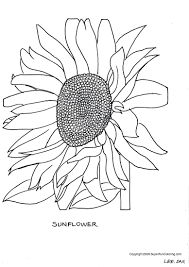 printable sunflower pattern pictures to color free patterns flower