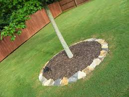 Landscaping Ideas Around Trees Pictures by Landscaping Around Trees Ideas How To Landscaping Around Trees