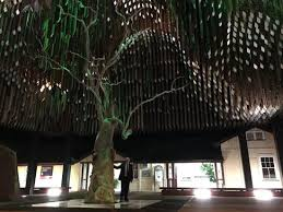 barcaldine tree of knowledge memorial picture of tree of