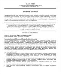 Example Of Executive Summary For Resume by Summary For Resume Sample Executive Summaryexecutive Summary