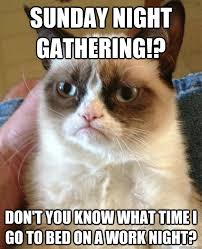 Sunday Night Meme - sunday night gathering cat meme cat planet cat planet