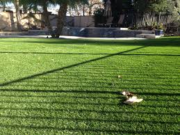 Outdoor Turf Rug Outdoor Turf Rug Lovely Artificial Grass What About Weeds