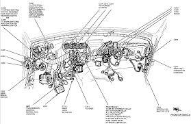 1995 ford ranger wiring diagram wordoflife me