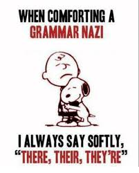 Grammer Nazi Meme - when comforting a grammar nazi i always say softly there their