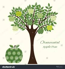 green apple tree different ornamental apples stock vector