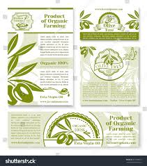 Farm Business Card Olives Business Banner Template Set Olive Stock Vector 615796655