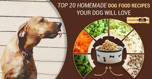 top 20 healthy homemade dog food recipes your dog will love u2013 the