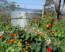 permaculture australia archives good life permaculture