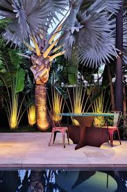 outdoor palm tree l king palm tree with white stucco siding l andscape tropical and