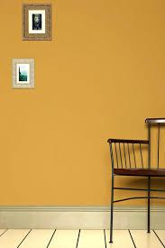 bright yellowlight burnt orange paint color light colors
