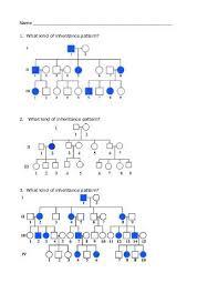 pedigree worksheet answers 28 templates genetics x linked