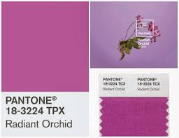 radiant orchid home decor color therapy kreative koncepts page do idolza