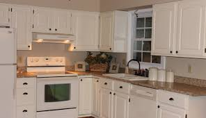 exotic paint kitchen cabinets green tags paint kitchen cabinets