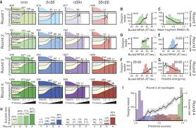 global analysis of protein folding using massively parallel design