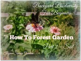 tsg backyard biodiversity for beginners part 2 soil