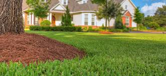 Landscaping Lawn Care by Landscaping Lawn Care Services U0026 Concrete Services In Bartow