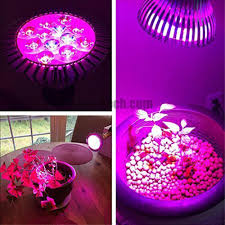 grow light bulb high efficient hydroponic plant grow lights for