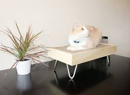 Modern Design Cat Furniture by 70 Best Cat Beds Images On Pinterest Cat Furniture Cat Condo