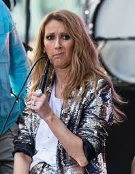 selin dion celine dion made the best faces during couple s meet and greet