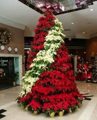 poinsettia tree commercial christmas trees decorators ambius