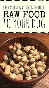 70 best healthy dog foods images on pinterest foods dog food