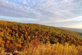 peak fall colors week norfolkdailynews